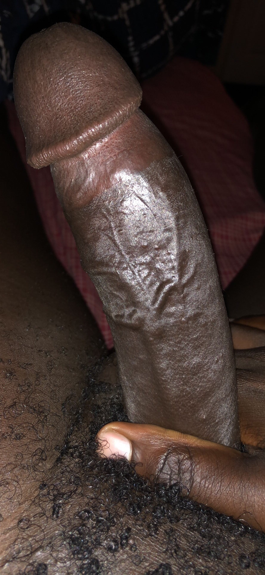 Could you fit on me? PMs welcomed ;) | Black  Porn XXX | Hot XXX Gays