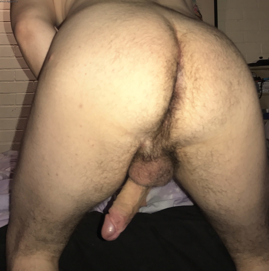 Do you like this view Sir?   Hairy  Porn XXX   Hot XXX Gays