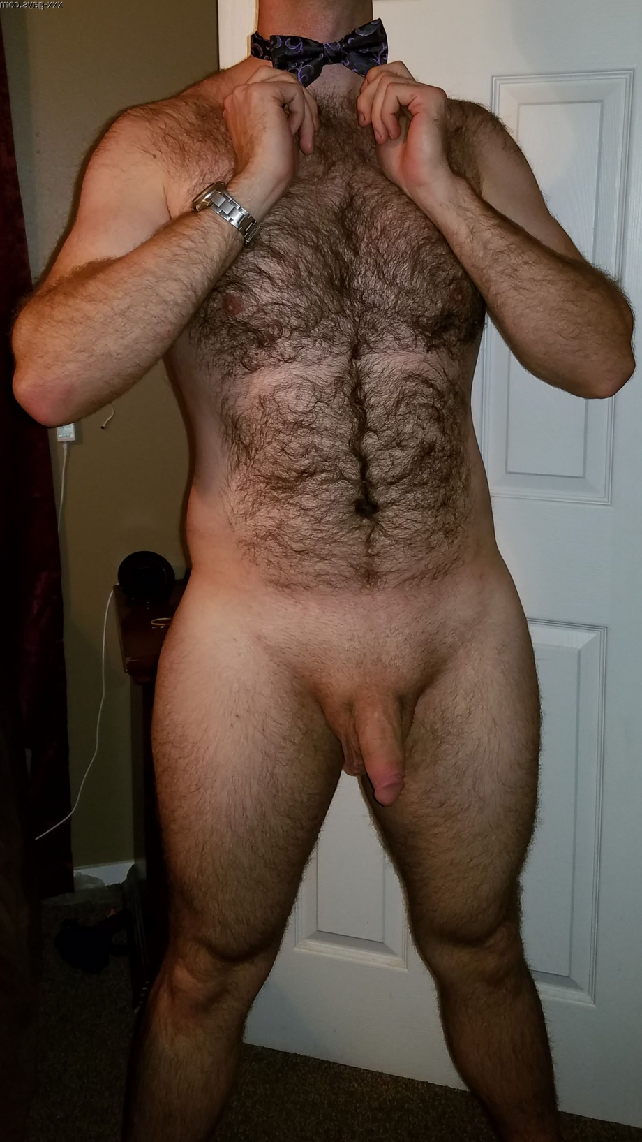 Here is a requested photo | Hairy  Porn XXX | Hot XXX Gays