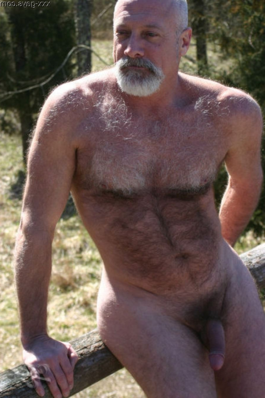 On the fence | Daddy/Mature  Porn XXX | Hot XXX Gays