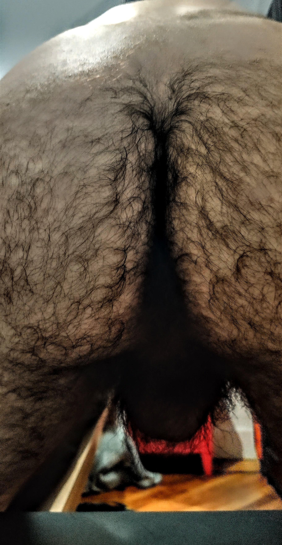Welcome to the jungle   Hairy  Porn XXX   Hot XXX Gays