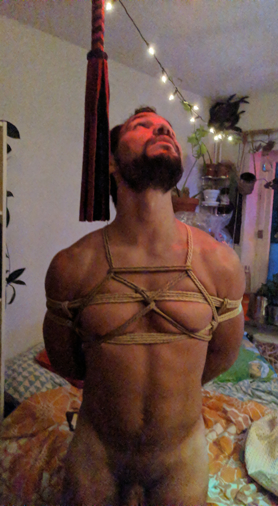 Who would like to tie me?   Hot Boys  Porn XXX   Hot XXX Gays