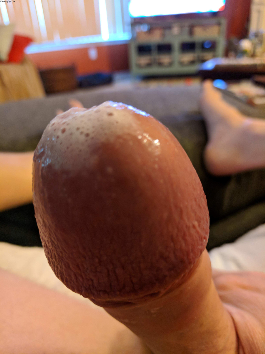 Worked into a froth all over my head. | Cum  Porn XXX | Hot XXX Gays